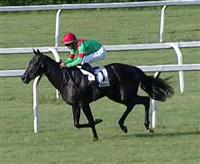 Black Elegance wins the Premio Mantovani