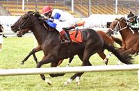 Blacktype_Commonwealth Turf Cup 2016_615x400