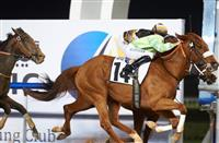 Bochart captures the IPIC Trophy under Richard Mullen at Meydan Racecourse. Image: Andrew Watkins