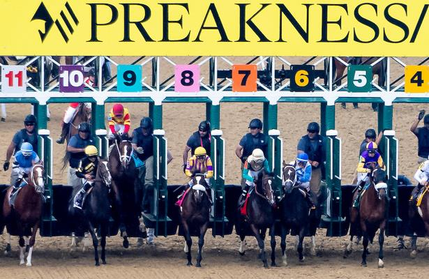 Preakness week attracts 464 nominations for 14 stakes