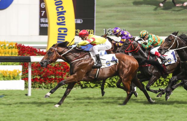 John Moore-trained Booming Delight, ridden by Sam Clipperton, won the Group 3 Lion Rock Trophy Handicap (1600m) at Sha Tin Racecourse today.