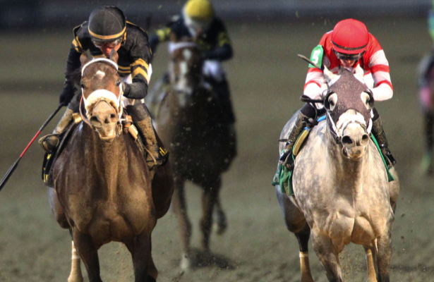 Do Patternrecognition, Leofric stack up in Pegasus World Cup?