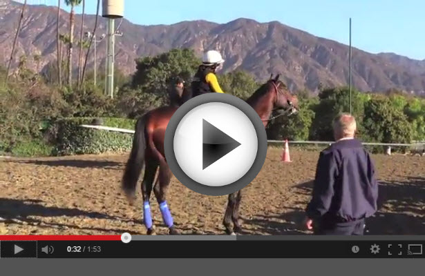 Breeders Cup 2013 Morning Workouts video