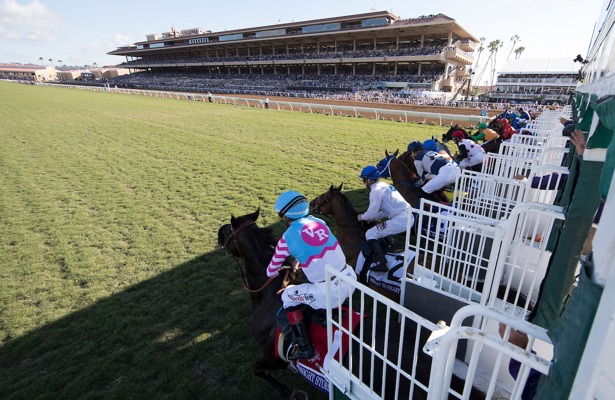 Bet these Breeders' Cup Saturday runners next time out