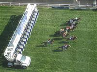 2013 Breeders' Stakes start
