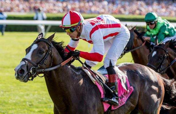 HRN Division Rankings: No. 1 horses strengthen their holds