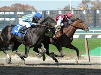 Buffum breaks maiden at Belmont Park (10-30-10).