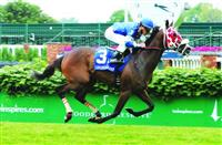 Bullards Alley_Louisville Handicap 2016_615x400