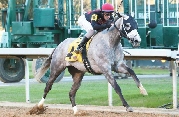 Chief Know It All pointing for Southwest Stakes