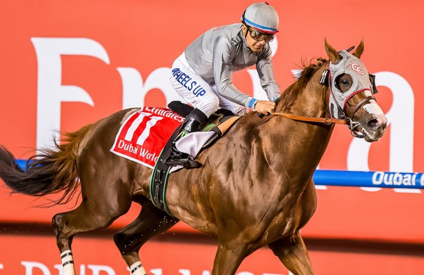 California Chrome and jockey Victor Espinoza flash under the wire at the 2016 Dubai World Cup.