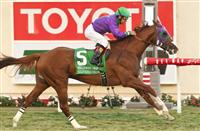 Flashback: California Chrome cruises in '14 Hollywood Derby