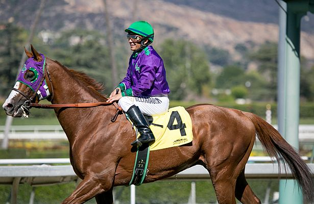 California Chrome Martines 615 X 400