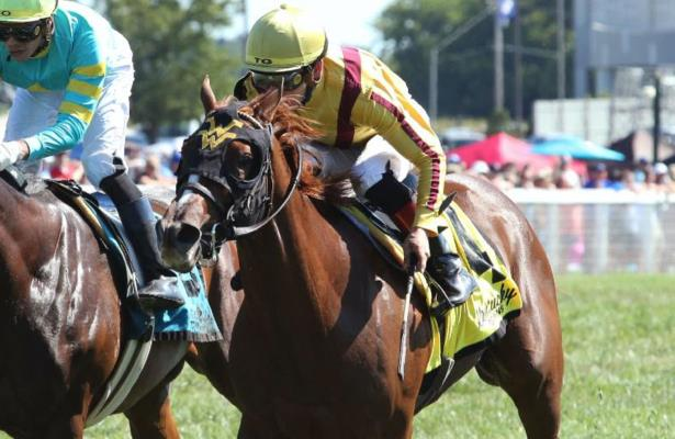 Ward's returning stakes winners Cambria, Maven to clash at Keeneland