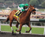 Caracortado takes the 2009 California Breeders' Championship