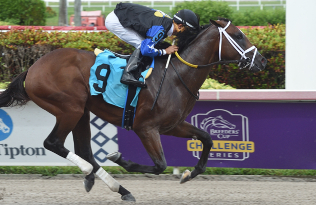 Chance It carries 'fitting name,' big Beyer into Florida Sire Series