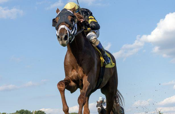 Channel Cat shortens up for Fort Lauderdale; Pegasus World Cup next?