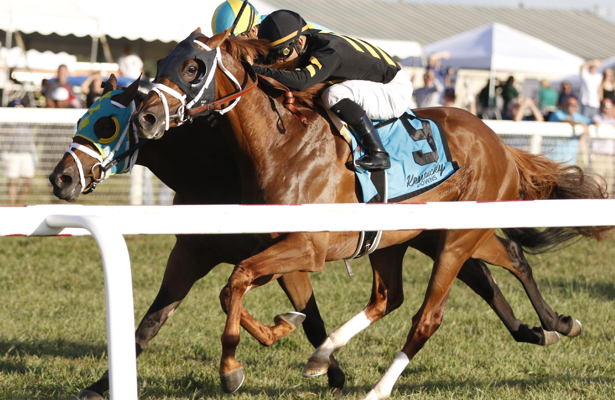 Trainers see opportunity in Laurel Park's new Bald Eagle Derby