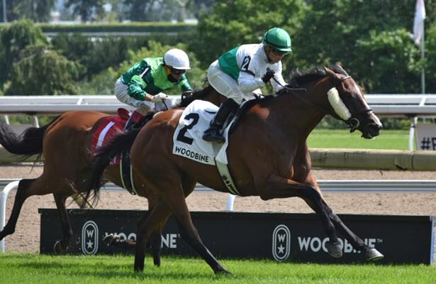Queen's Plate 2020 guide: Odds, picks and analysis