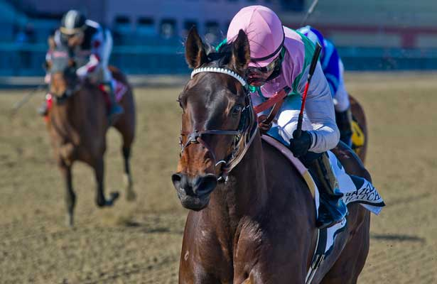 Close Hatches, ridden by Joel Rosario, wins the Gazelle Stakes on Wood Memorial Day at Aqueduct Race Track in Ozone Park, New York on April 6, 2013