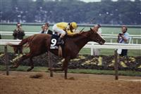 Coastal wins the 1979 Belmont Stakes