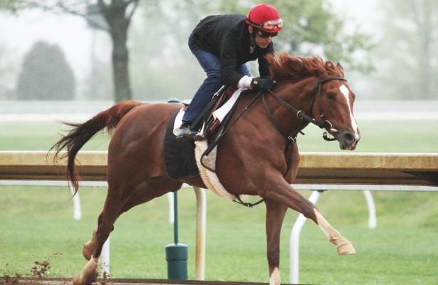 Code of Honor had 'time to grow up' for Belmont's Westchester