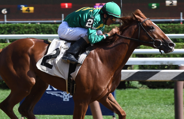 Zipse: Why Code of Honor's a top Kentucky Derby longshot