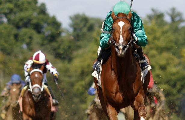 Zipse: As action picks up, be on the lookout for these horses