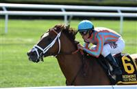 Conquest Enforcer wins 2016 Allied Forces
