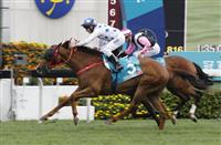 Contentment (No. 3), trained by John Size and ridden by Brett Prebble, wins the Group 1 Champions Mile at Sha Tin Racecourse today. Beauty Only and Helene Paragon finish second and third respectively in this HK$16 million event.