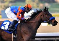 January 10, 2010.Crisp riden by Joel Rosario, wins The Santa Ysabel Stakes at Santa Anita Park, Arcadia, CA.