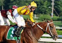 Curlin and Robby Albarado capture the 2008 Woodward over Past the Point at Saratoga