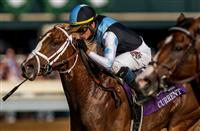 Breeders' Cup Juvenile Turf 2018: Projected field, odds