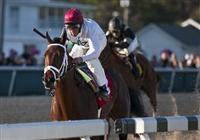 Rule wins Sam Davis and Tampa Bay Downs.
