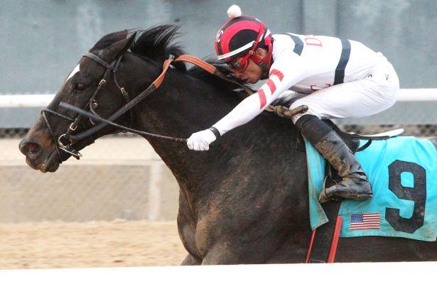 Oaklawn Park Barn Notes For Azeri Stakes And Essex