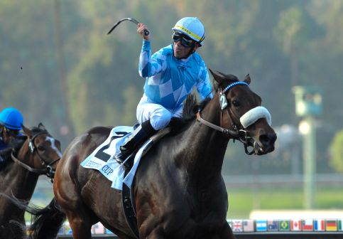 6 November 2009: Garrett Gomez and Life Is Sweet before take the G1 Breeder's Cup Ladies' Classic at Santa Anita in Pasadena California.