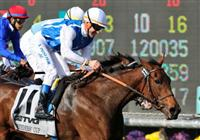 7 November 2009: Goldikova (f) with O. Preslier up (#11) takes the Million Breeder's Cup Turf Mile at Oak Tree at Santa Anita in Arcadia California.