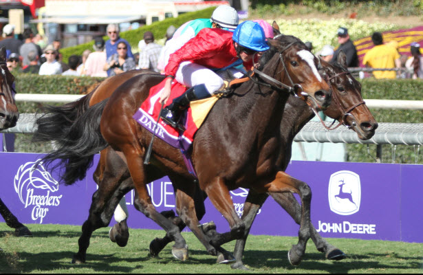 Danks wins the Breeders Cup Filly & Mare Turf