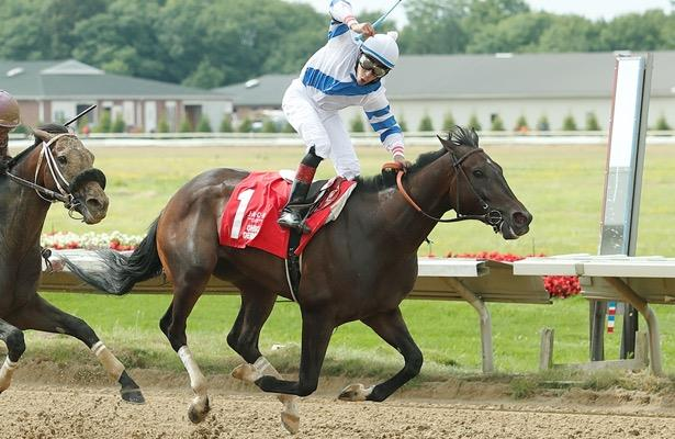 Amoss eyes Ellis Park Derby for Ohio Derby winner Dean Martini