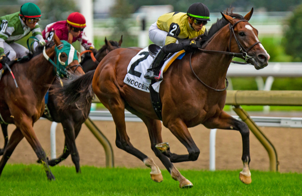 Decorated Invader rallies for Breeders' Cup spot in Woodbine's Summer