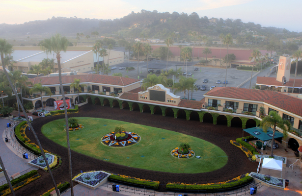 Two equine fatalities after 'freak' Del Mar training collision