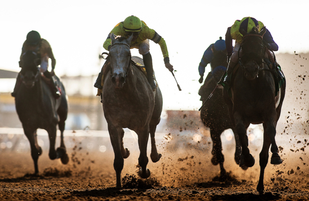 Pair of Sunday equine fatalities Del Mar's first in 2019