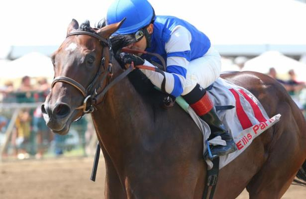 Dennis' Moment to run for Breeders' Cup spot in Iroquois Stakes