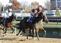 Dialed In breaks his maiden at Churchill in November 2010.