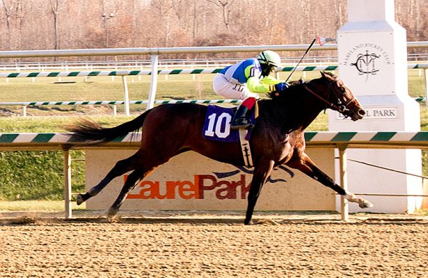 Divining Rod wins at Laurel (11-21-14)