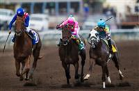 Three-way finish in the Los Alamitos Futurity: Dortmund (outside) prevails over Firing Line and Mr. Z (inside)
