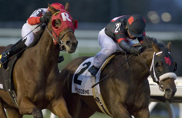 Woodbine set to host Queen's Plate prep and Grade 2 Eclipse