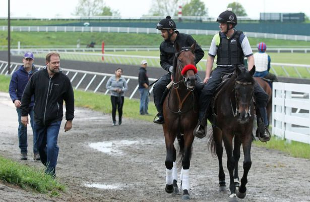 Doug O'Neill and Nyquist at Keeneland (4-27-16)
