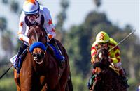 Breeders' Cup Filly & Mare Sprint 2018: Projected field, odds