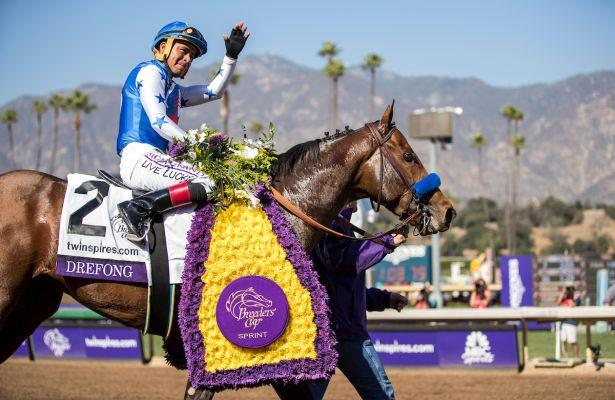 Breeders Cup Sprint Projected Field Odds And Analysis