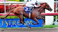 Drosselmeyer winning an allowance race at Gulfstream Park